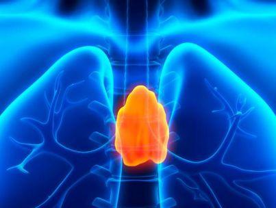 Какие симптомы возникают при заболеваниях вилочковой железы?