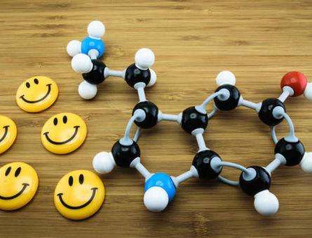 Как повысить уровень серотонина в организме?