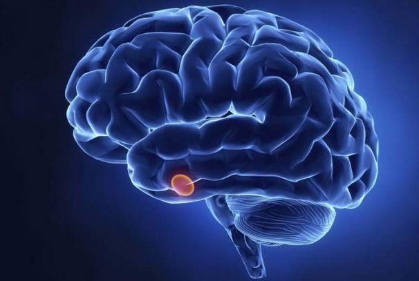 Гипофиз – большие последствия болезней маленькой железы