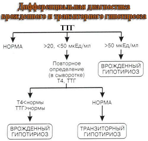 Уровень ТТГ при врожденном гипотиреозе