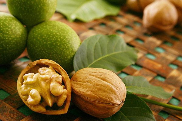 Грецкий орех от аденомы щитовидки
