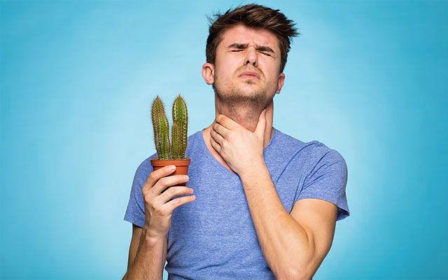 диаета при аутоиммунном тиреоидите щитовидной железы