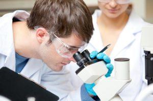 Пролактин в мужском организме