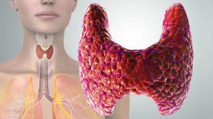 лечение гипотиреоза эндонорм