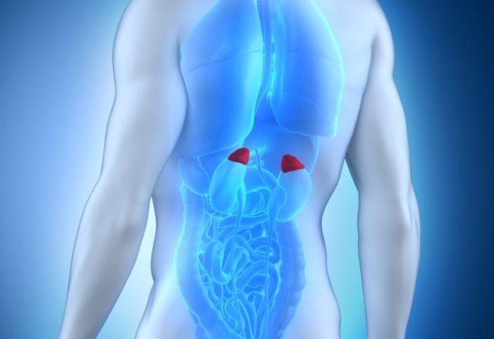 надпочечники симптомы заболевания у мужчин