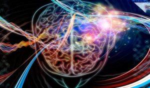 Эпифиз головного мозга