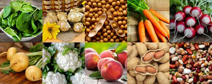 Струмогенные продукты