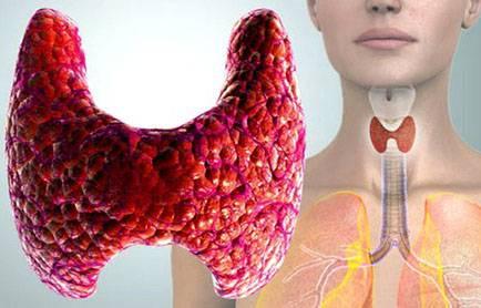 как быстро вылечить щитовидку народными средствами