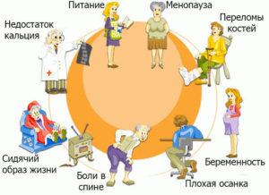 Инфографика: причины остеопороза