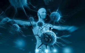 Шизофрения иммунитета